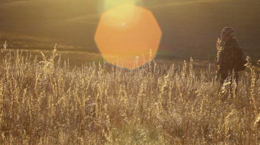 Screen Shot 2015-06-30 at 8.41.37 AM